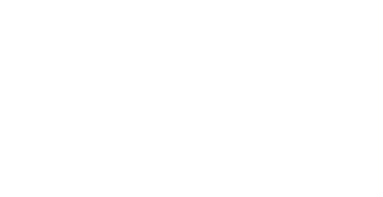 DM Solutions logo (white-color)